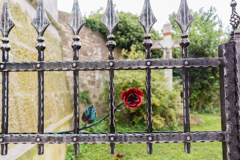Iron gate with red rose and crucifix royalty free stock photo