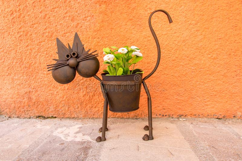 Iron pot cat with white flowers. stock photo