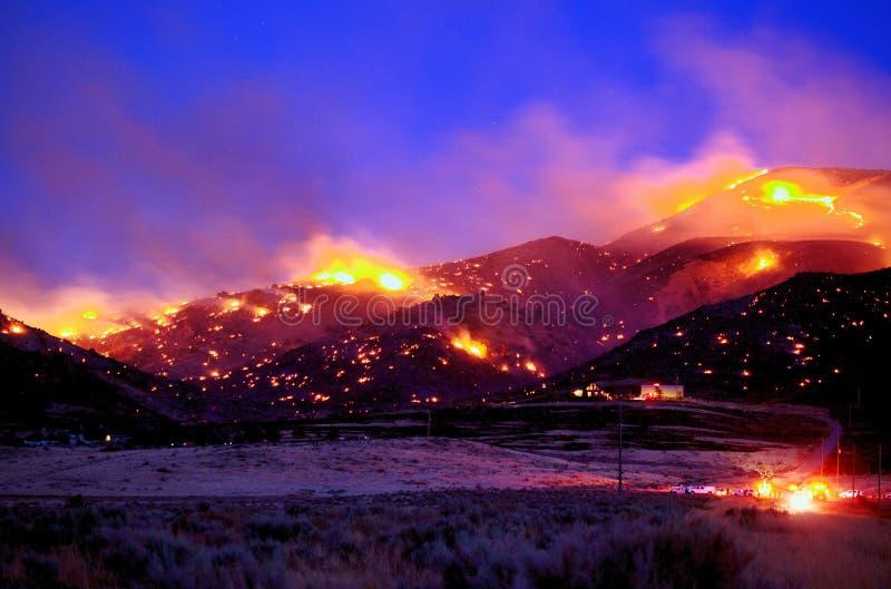 Ironwood-Feuer stockfotos