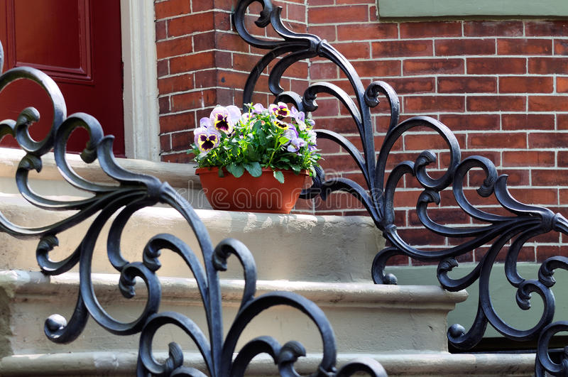 Ironwork, Victorian Style, and Flower Pot on Steps. Iron railing and flower pot on steps of house entrance. Elegant ironwork, Victorian style, South End Boston stock photography