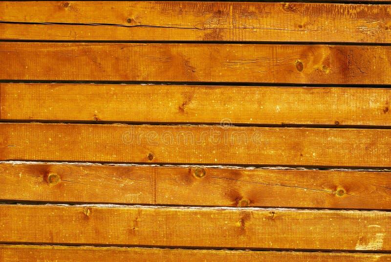 irradia la parete naturale del cedro di legno fotografia stock