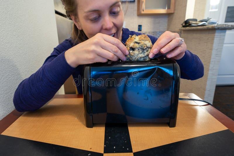 Irregef?hrte Frauenversuche, einen gro?en Blaubeerscone in einen kleinen Toasterschlitz anzuf?llen, bedeutet f?r Brot lizenzfreie stockbilder