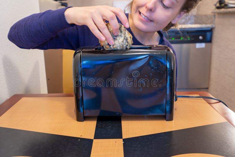 Irregef?hrte Frauenversuche, einen gro?en Blaubeerscone in einen kleinen Toasterschlitz anzuf?llen, bedeutet f?r Brot lizenzfreie stockfotografie