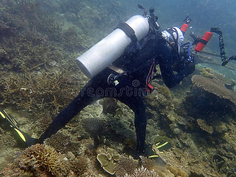Irresponsibility underwater photographer whom step on the coral reefs during a leisure dive in Tunku Abdul Rahman Park, Sabah. Irresponsibility underwater royalty free stock images