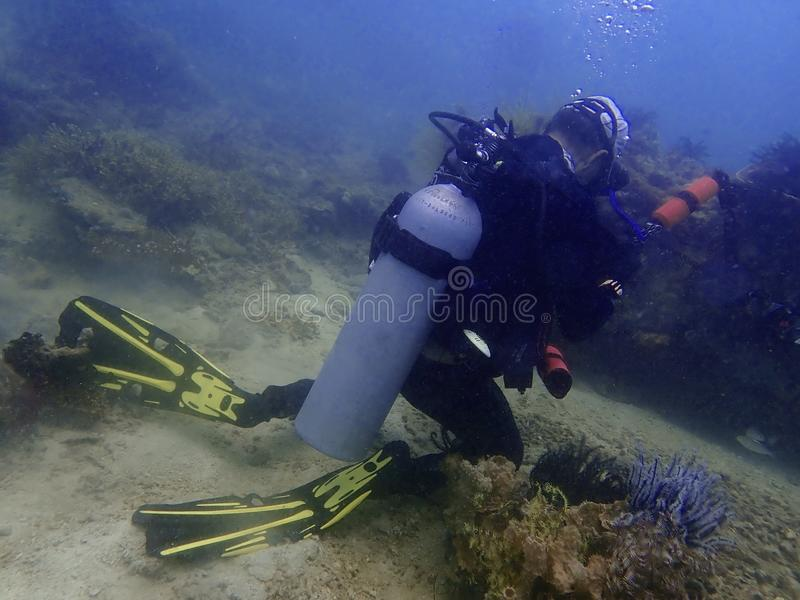 Irresponsibility underwater photographer whom step on the coral reefs during a leisure dive in Tunku Abdul Rahman Park, Kota Kinab. Irresponsibility and stock photo