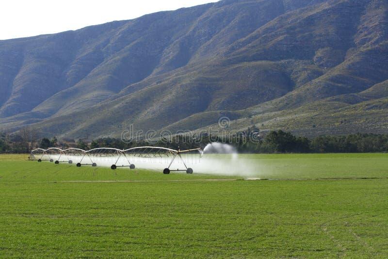 Irrigação da terra foto de stock