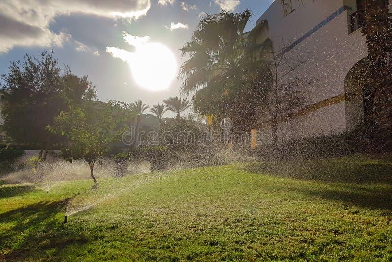 Irrigação de sistema de extinção de incêndios foto de stock