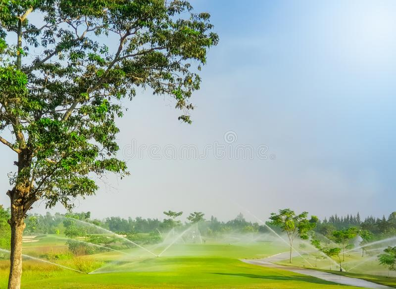 A irrigação polvilha o sistema que molha no campo de golfe foto de stock royalty free