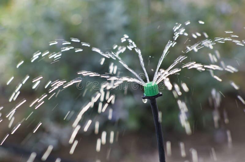 Irrigación fotografía de archivo