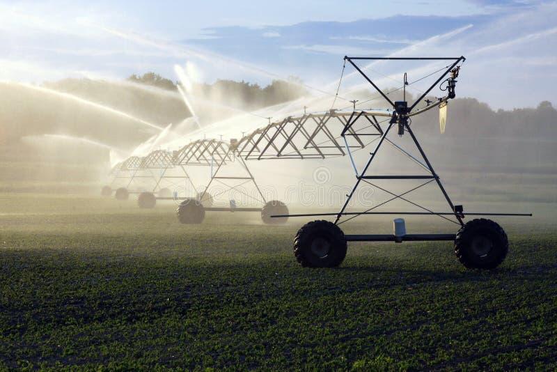 Irrigación de la cosecha fotografía de archivo libre de regalías
