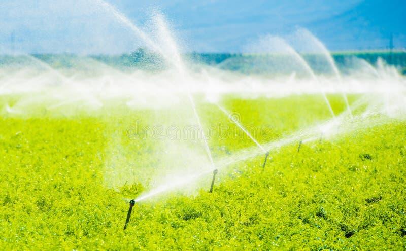 Irrigación del campo de granja fotos de archivo