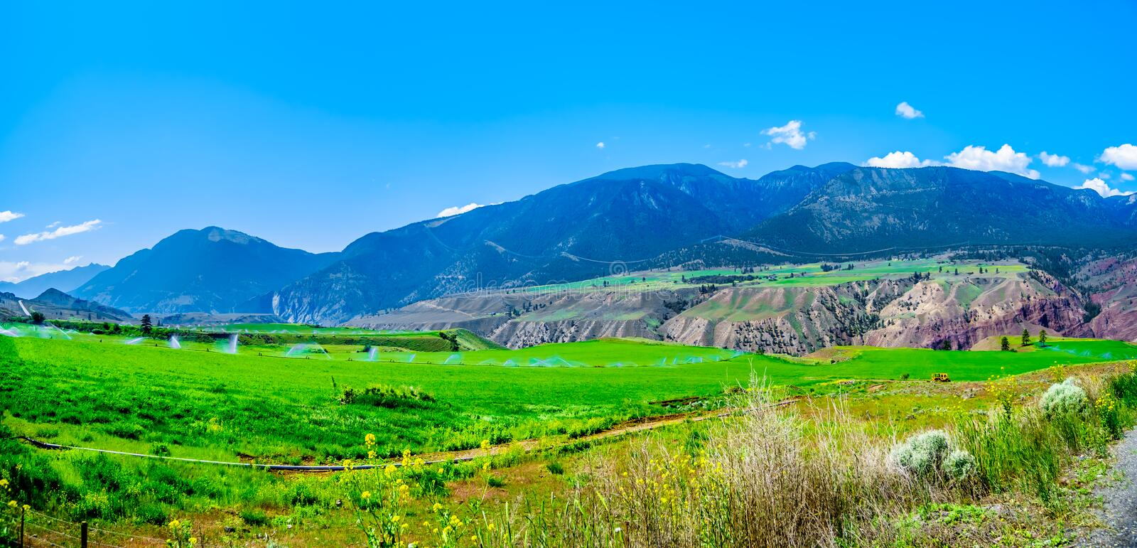 Irrigated fertile farmland along the Fraser River as it flows through the canyon to the town of Lillooet in the Chilcotin region stock photo