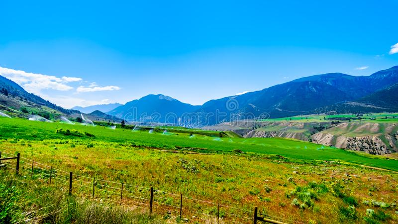 Irrigated fertile farmland along the Fraser River as it flows through the canyon to the town of Lillooet in the Chilcotin region stock photos
