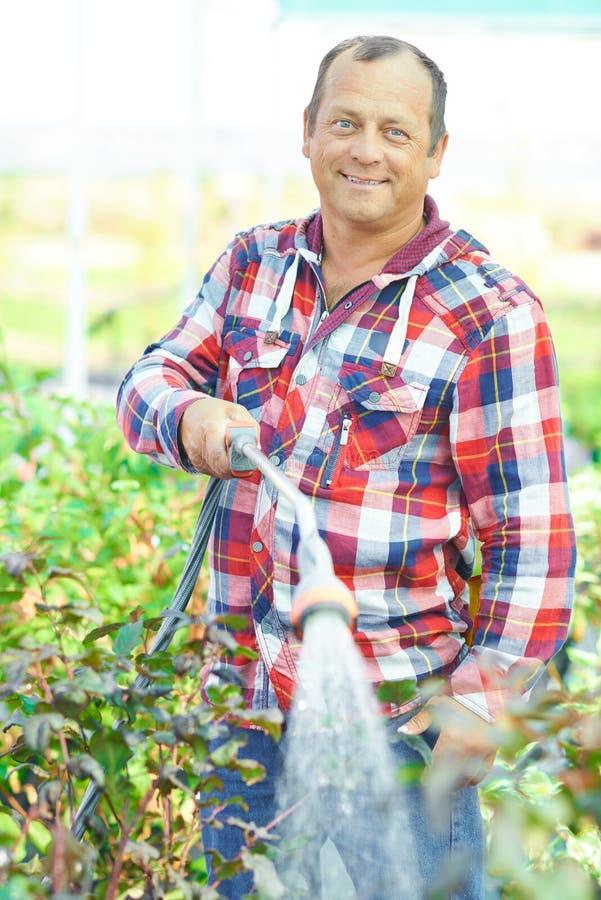 irrigatie stock foto's
