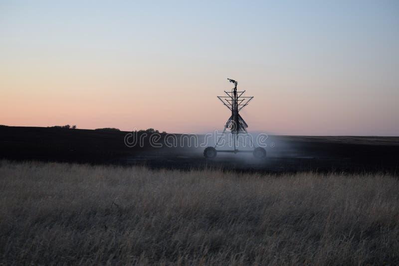 Irrigatie op gebied bij zonsopgang royalty-vrije stock foto's