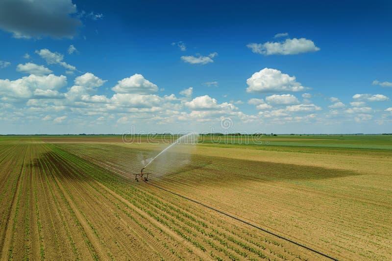 Irrigatiemateriaal het water geven gebied Lucht Mening irrigatie royalty-vrije stock foto