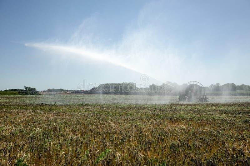 Irrigatiespil die de Gebieden water geven stock afbeelding