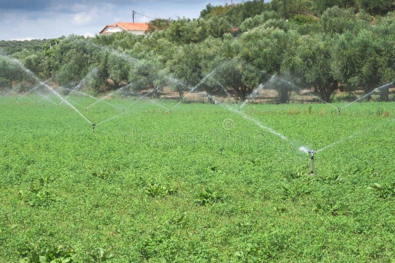 Irrigatiesystemen royalty-vrije stock afbeeldingen