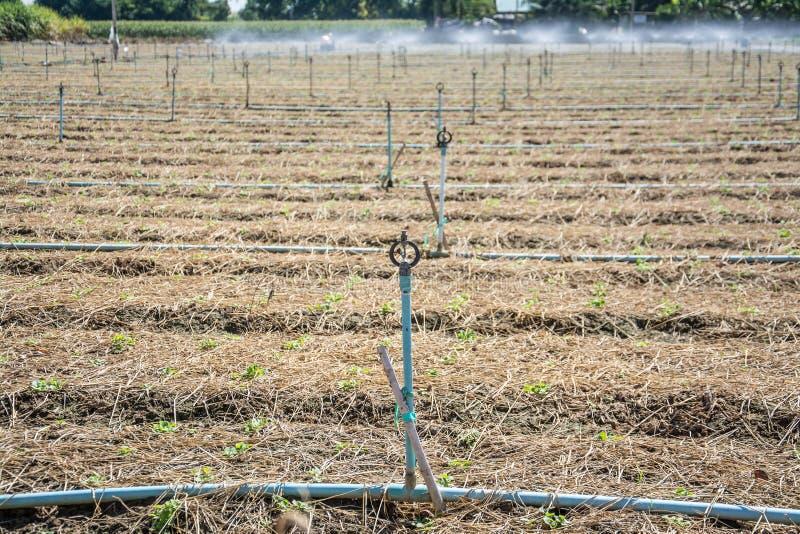 Irrigatiesystemen in landbouwgrond royalty-vrije stock foto's