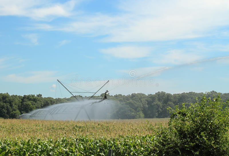 Irrigating a Corn Field. Against a blue sky with clouds stock photo