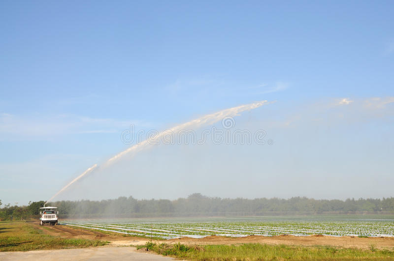 Irrigating a field, Florida. Irrigating a field in Florida USA stock image