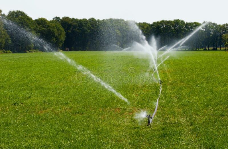 Irrigating grassland in summer. Irrigating grassland in a period of drought in the summer in the Netherlands stock images