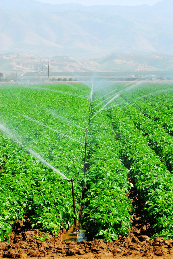 Free Irrigation Royalty Free Stock Photo - 2281535