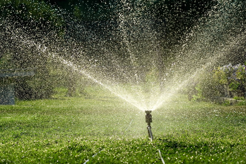 Irrigation royalty free stock image