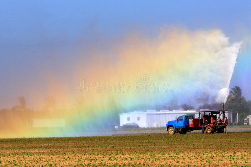 Irrigation of Agricultural field royalty free stock photo