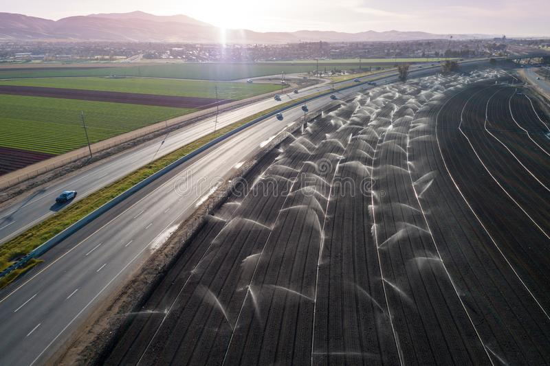 Irrigation Agriculture Field in California, United States. Sprinkler system waters rows of lettuce crops on farmland in the Salinas Valley royalty free stock photography