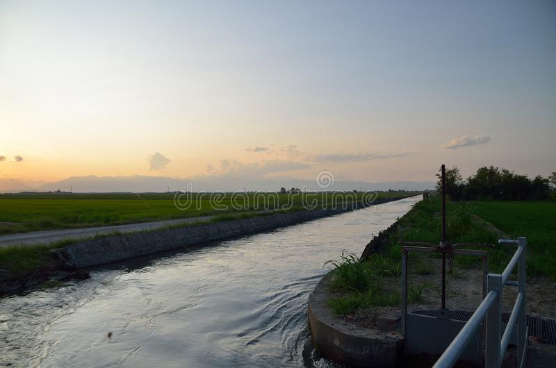 Irrigation channel near the rice fields royalty free stock image