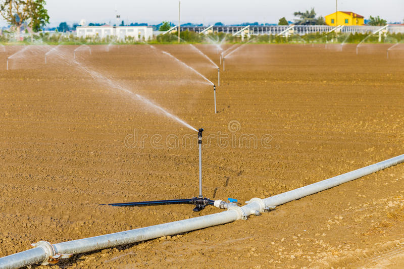 Irrigation of cultivated fields royalty free stock photos