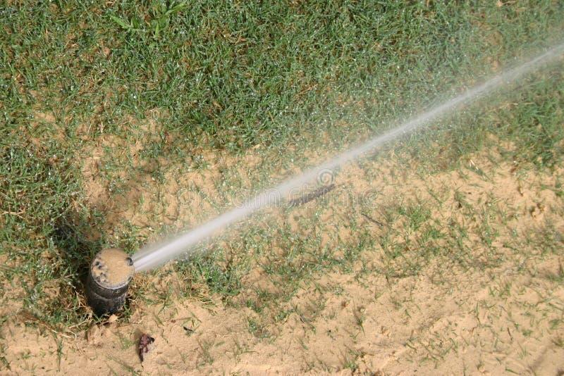 Irrigation de pelouse image stock