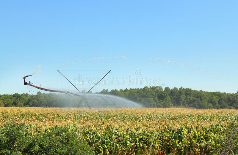 Download Irrigation Equipment stock photo. Image of agriculture - 26076430