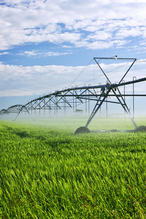 Free Irrigation Equipment On Farm Field Stock Photo - 19997670
