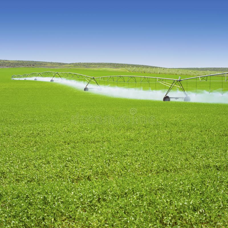 Irrigation equipment watering Spring crops in green farm field. Agriculture farming industry royalty free stock photo