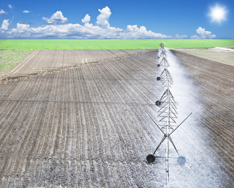 Irrigation of a farm field stock photos