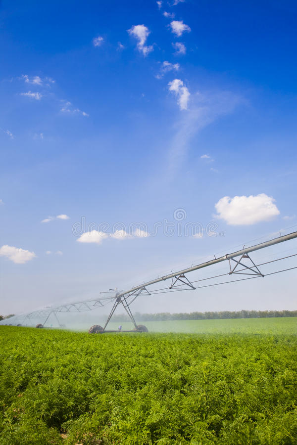 Download Irrigation In Field / Agriculture Stock Image - Image: 19560049