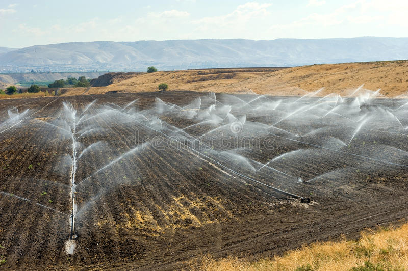 Irrigation in Israel. Irrigating farmland in the Jordan valley in Istael between the Sea of Galilee and Beit She'an royalty free stock photography