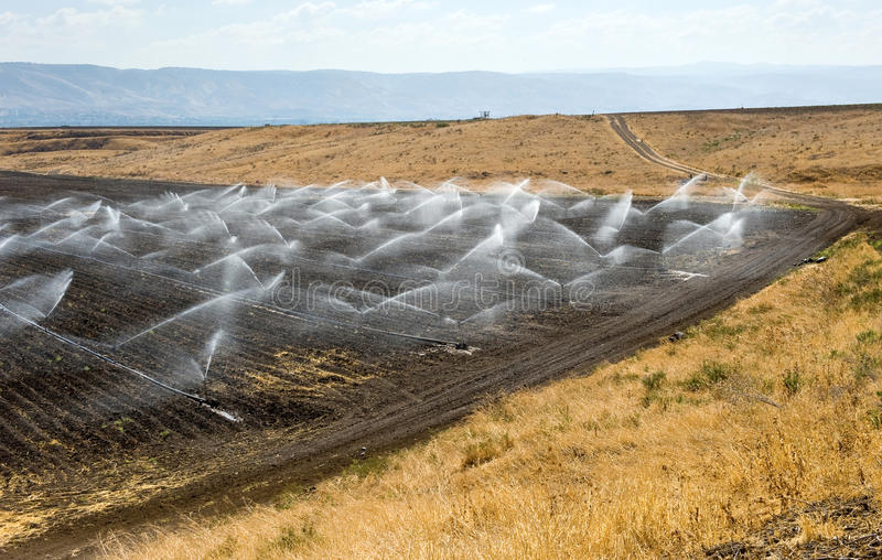 Irrigation in Israel. Irrigating farmland in the Jordan valley in Israel between the Sea of Galilee and Beit She'an stock photos