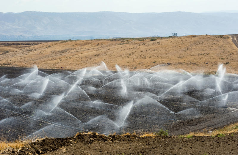 Irrigation in Israel. Irrigating farmland in the Jordan valley in Israel between the Sea of Galilee and Beit She'an stock images
