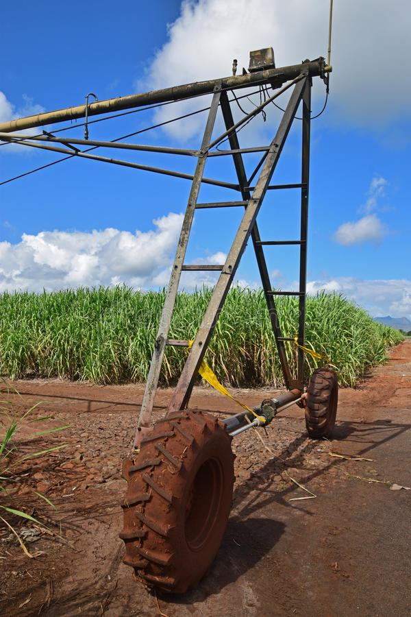 Irrigation machinery system used in Sugarcane plantation field. Pivot irrigation is a popular method of crop irrigation and usually either center or linear stock photo