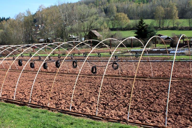 Download Irrigation scheme stock photo. Image of grow, plant, farming - 14256058