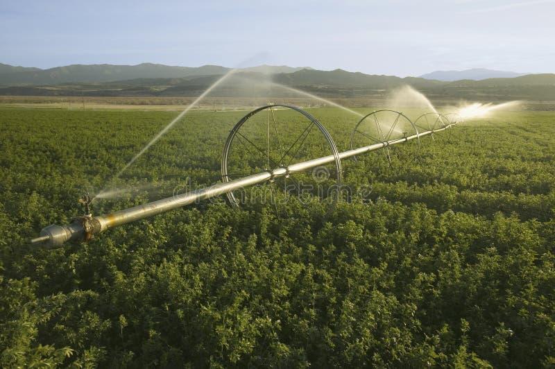 Irrigation Sprinklers Stock Photos