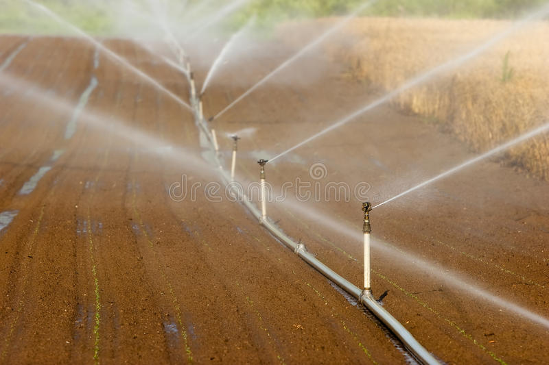 Irrigation system. On a large farm field royalty free stock photography