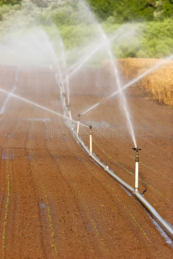 Download Irrigation system stock image. Image of farming, agronomy - 15706483