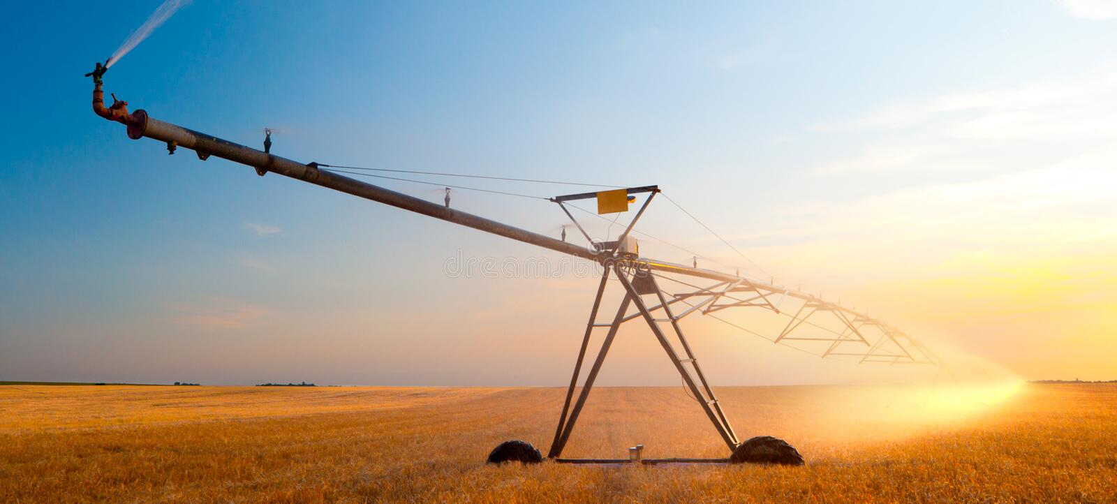 Irrigation system on agricultural wheat field at summer sunse royalty free stock photos