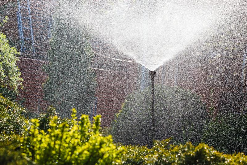 Irrigation system sprays water in the home garden stock photos