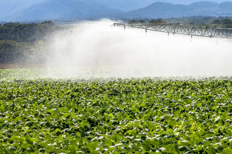 Irrigation system watering a farm field of soy,. In Brazil stock photos