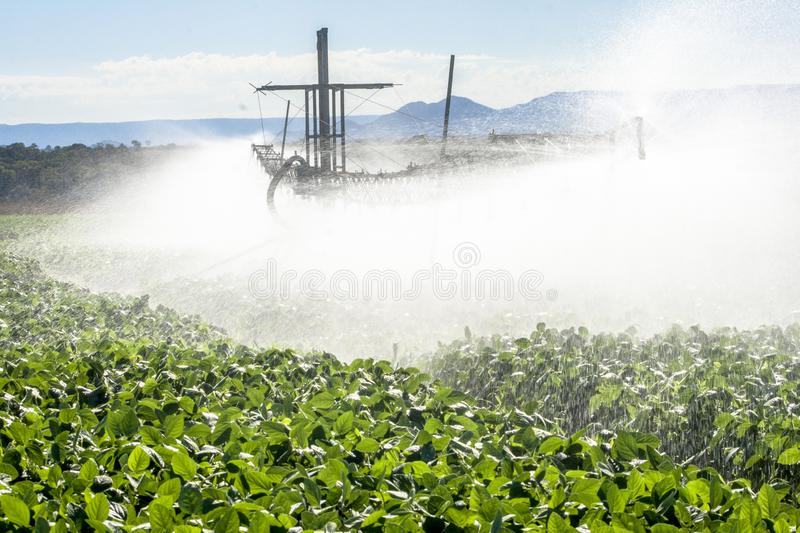 Irrigation system watering a farm field of soy,. In Brazil stock image